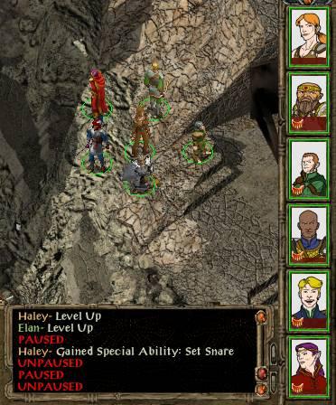 baldurs gate enhanced edition custom portraits multiplayer